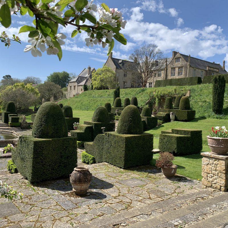 Beautiful Mapperton Gardens
