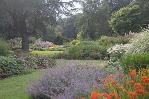 Bressingham Garden flowers