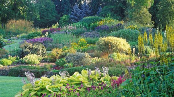 Bressingham Hall garden