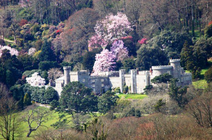 Caerhays Castle landscape
