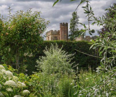 Carron Nightingale Penshurst Place