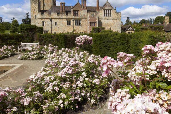 Hever Castle gardens in the summer