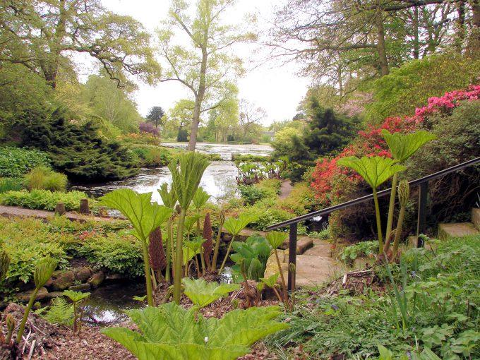 Hodnet Hall Garden in Shropshire