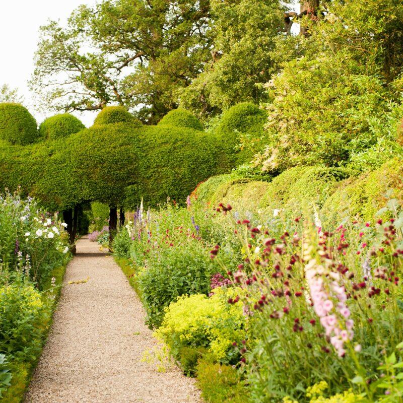 Kelmarsh Hall garden roses