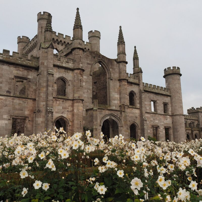 Lowther Castle in Cumbria with daffodils