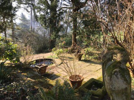 Mapperton Gardens pool