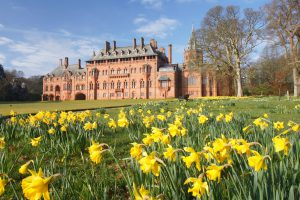 Mount Stuart in Scotland with daffodils