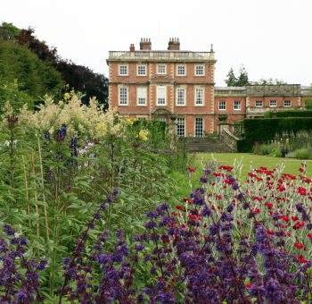 Newby Hall gardens has a range of plants