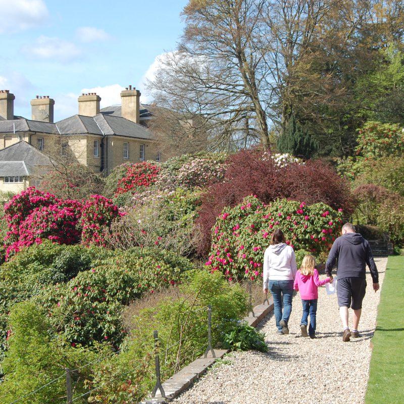 Riverhill Gardens in Kent