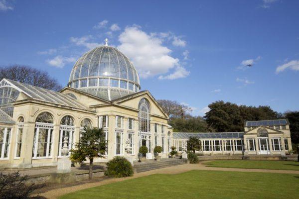 Syon Park greenhouse