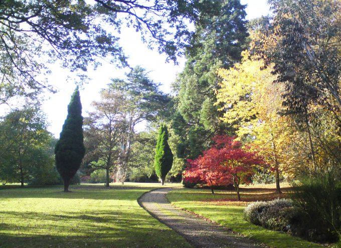 Whatton House garden