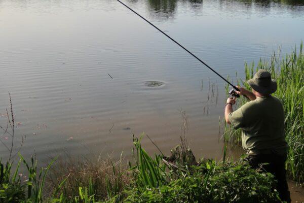 Kiplin Hall and Gardens lake is a popular fishing fish destination but still has secrets to reveal! Photo courtesy of Richard Bartlett