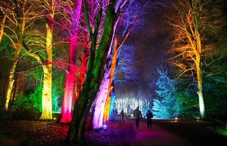 Blenheim Palace light exhibition