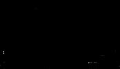 Chenies Manor House Logo