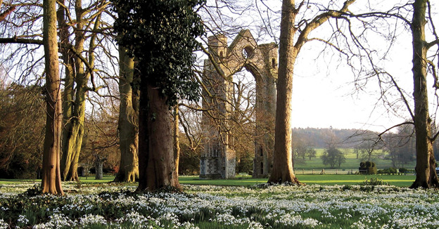Walsingham Abbey in early spring with snowdrops