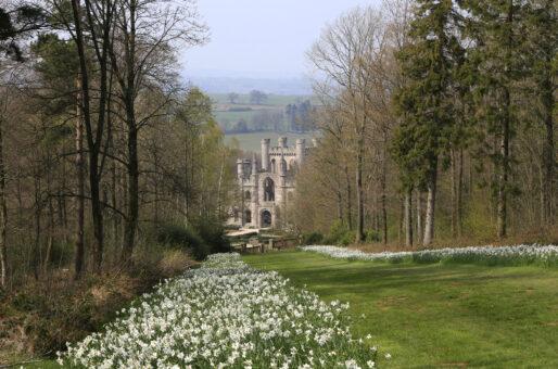 Lowther Castle Patte d'Oie 15961