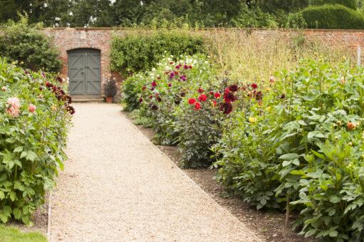 August path at Kelmarsh Hall