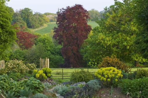 Doddington Place Garden grounds view