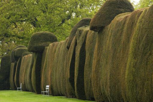 Doddington Place Garden hedge