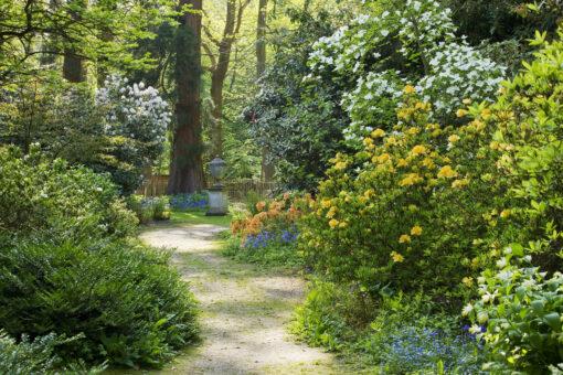 Doddington Place Garden path