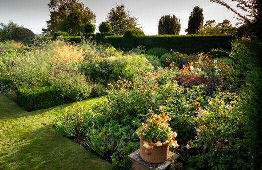 Doddington Place Garden by Molly Hollman