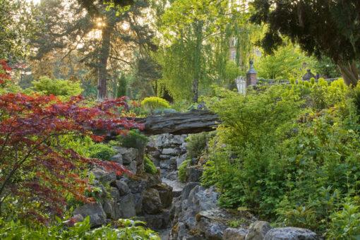 Doddington Place Garden wild