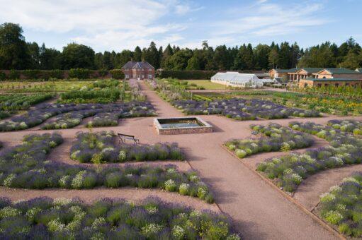Gordon Castle Walled Garden herb row