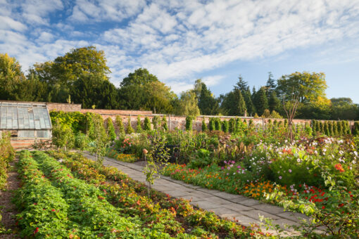 Walled Garden. Harewood House,Yorkshire, UK. Early Autumn, September 2015.